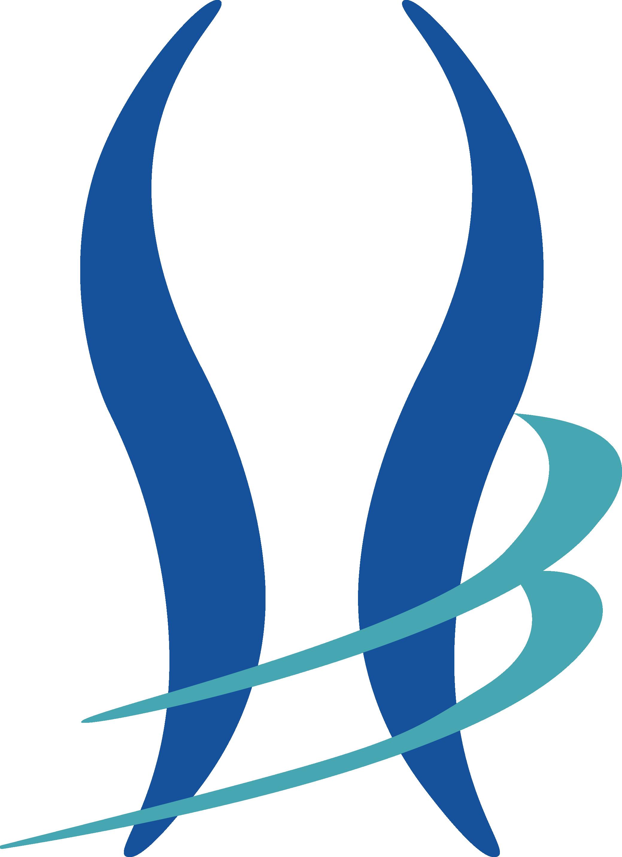 Logo soto y Zuluaga v1